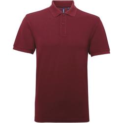Abbigliamento Uomo Polo maniche corte Asquith & Fox AQ015 Bordeaux