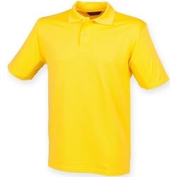 Abbigliamento Uomo Polo maniche corte Henbury HB475 Giallo