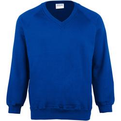 Abbigliamento Uomo Felpe Maddins MD02M Blu reale