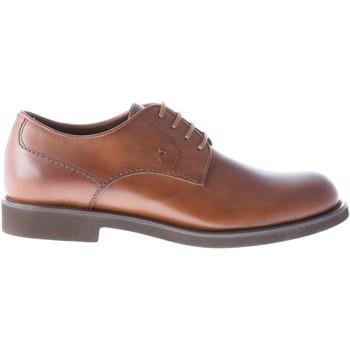 Scarpe Uomo Derby Tod's Uomo scarpa derby in pelle MARRONE con suola in gomma marrone