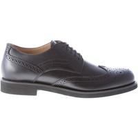Scarpe Uomo Derby Tod's Uomo scarpa derby in pelle NERO con impunture brogue nero