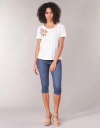 Abbigliamento Donna Pinocchietto Yurban JATARA Blu / Medium