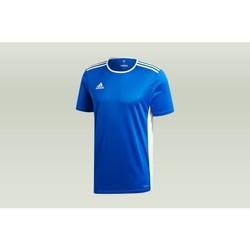 Abbigliamento Uomo T-shirt maniche corte adidas Originals Entrada 18 Blu