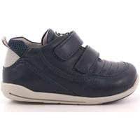 Scarpe Bambino Sneakers basse Chicco 331 - 0105851 800 Blu
