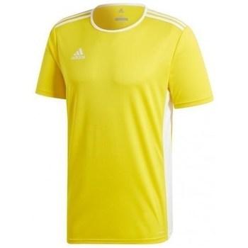 Abbigliamento Uomo T-shirt maniche corte adidas Originals Entrada 18 Jsy Giallo