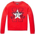 Tommy Hilfiger ESSENTIAL STAR AND H SWEATER