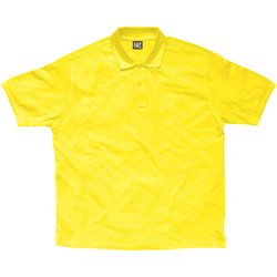 Abbigliamento Bambino Polo maniche corte Sg SG59K Giallo
