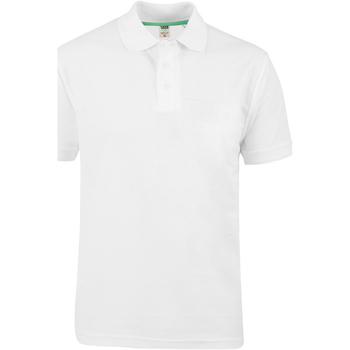 Abbigliamento Uomo Polo maniche corte Duke  Bianco