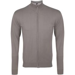 Abbigliamento Uomo Gilet / Cardigan Sols Gordon Grigio