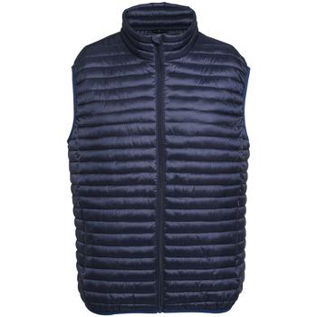 Abbigliamento Uomo Piumini 2786 Fineline Blu navy