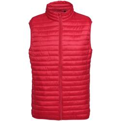 Abbigliamento Uomo Piumini 2786 Fineline Rosso