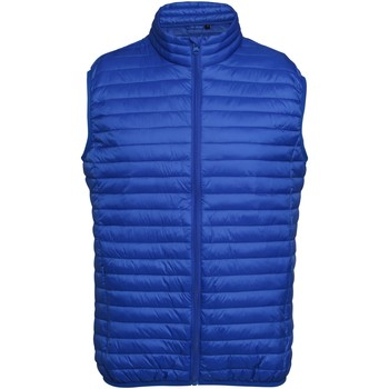 Abbigliamento Uomo Piumini 2786 Fineline Blu reale