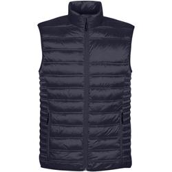 Abbigliamento Uomo Piumini Stormtech ST158 Blu navy